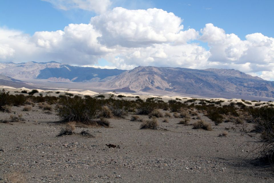 Death Valley Feb 27 052