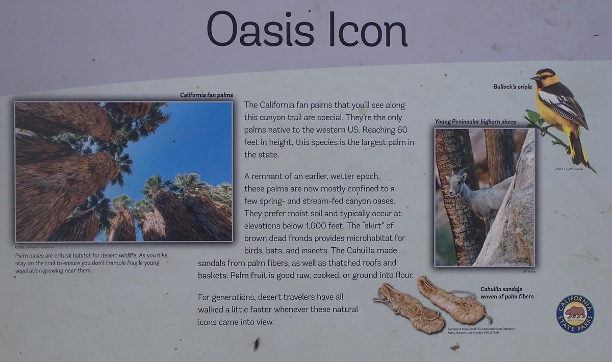Oasis-sign.jpg