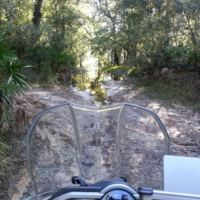 pirelli_scorpion_trail_fl_sugarsand_II.jpg